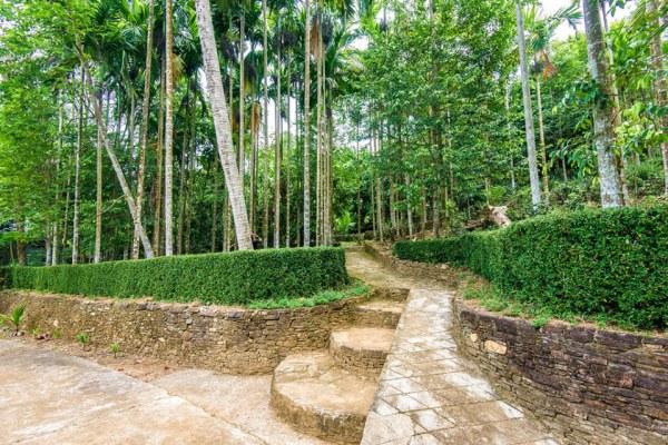 Ngôi làng cổ Lộc Yên đẹp như tranh vẽ của xứ Quảng